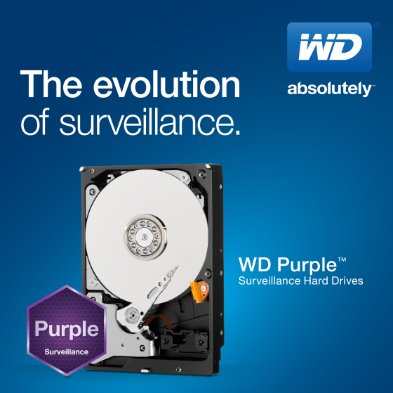 Western Digital Purple WD30PURX 3.5